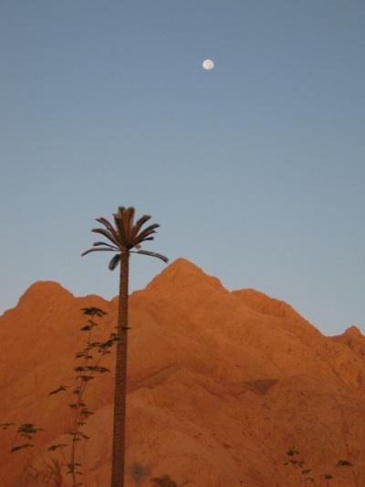 рассвет над Синаем