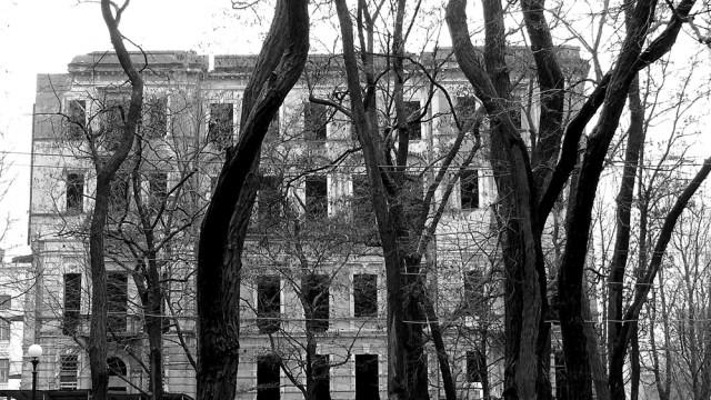 старые акации и старый дом на проспекте