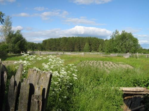 А за огородом начинается лес. Голодными зимами волчьи стаи из таги входили даже в поселок