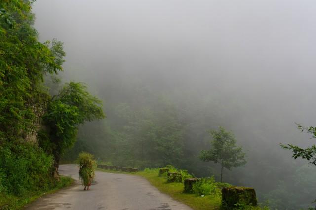 Непальский ёжик в тумане