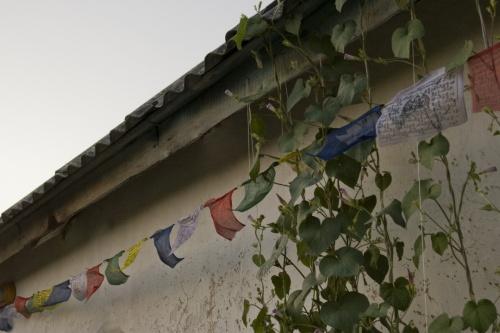 Типичная украинская хата явно демонстрирует историческую связь Украины с буддизмом и Гималаями