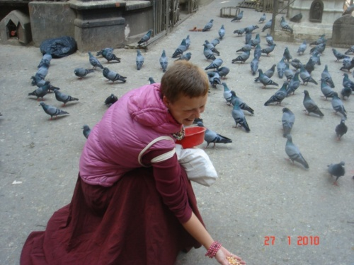 Кормить голубей в их же храме-сплошное удовольствие)))