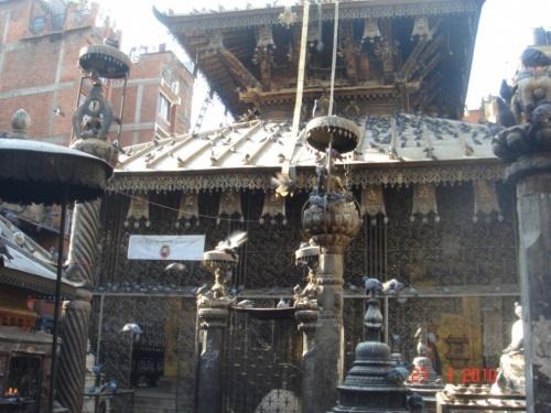 Голубиный храм в Катманду