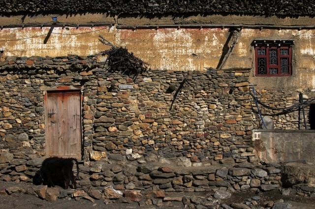 Деревня Тири