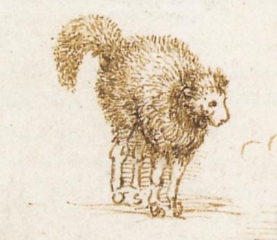 Тот самый кот да Винчи. Вернее, овцекот.