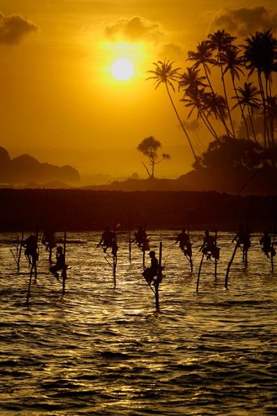 Рыбаки сидят на палках, вкопанных в дно океана, возле города Галле, Шри-Ланка