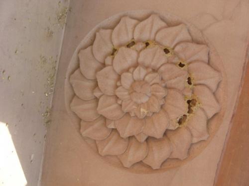 Сарнатх, мандала в виде лотоса