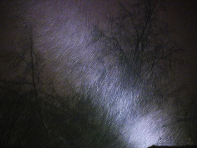 снег над марсовым полем
