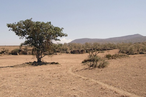 Пейзаж долины