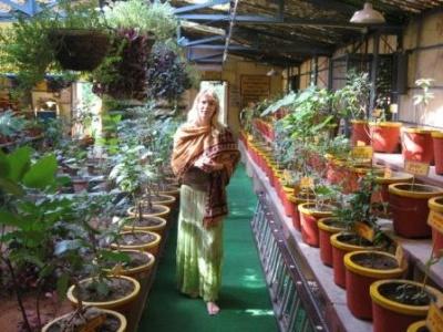 Юля из Краснодара возле дендрария