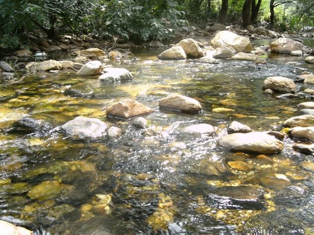 Чудесная речка