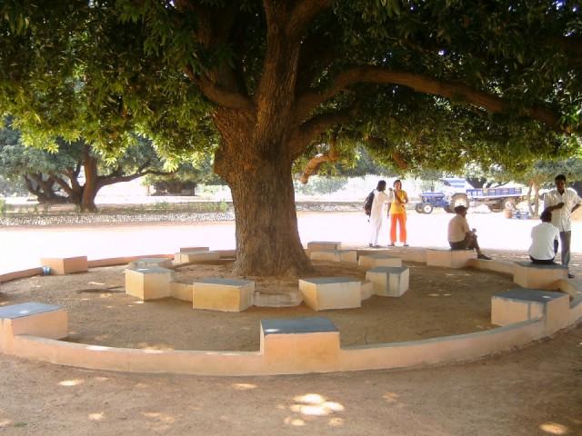 Дерево для занятий и медитаций