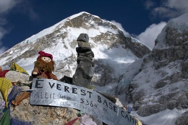 Шапка для трека к Эвересту (знакомая индостанка вязала)
