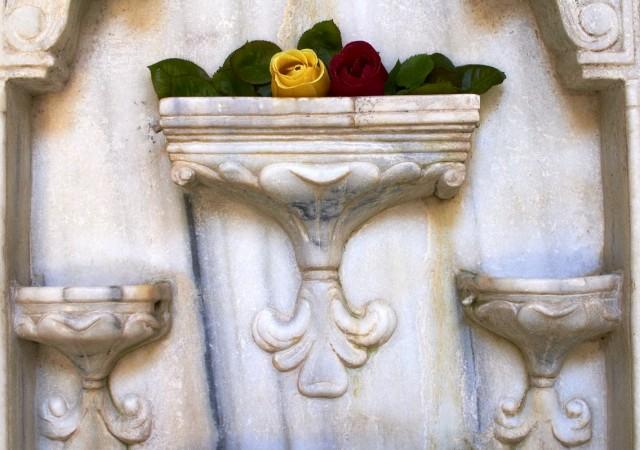 Пушкинские розы на Фонтане слез
