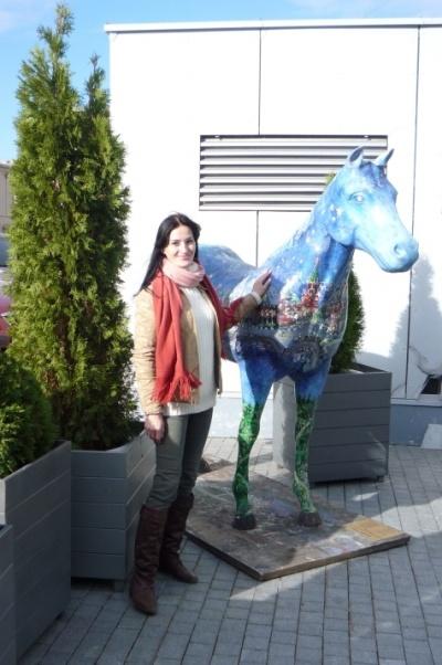 я и конь