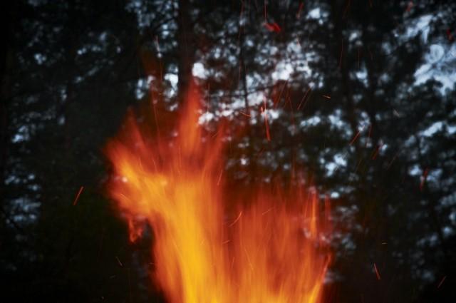 Чудище огненное