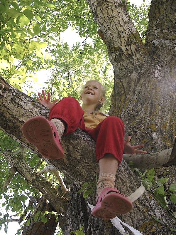 Ползали по деревьям