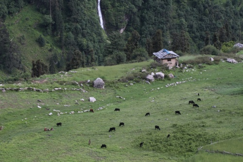 Vichi village