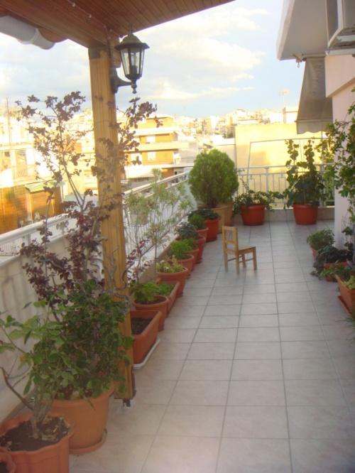 не забуду этот балкон, очень длинный и внутри лишь цветы