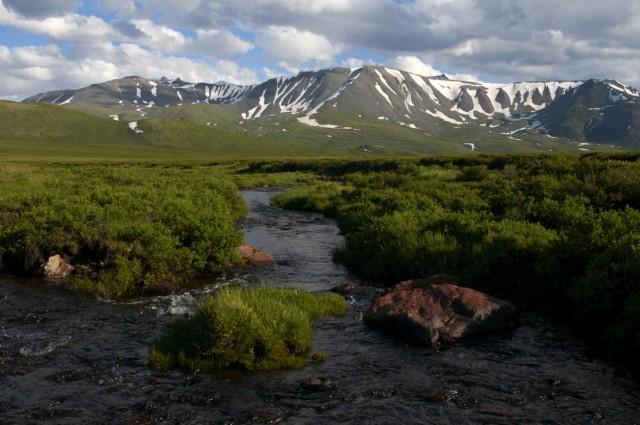 Речка на плато