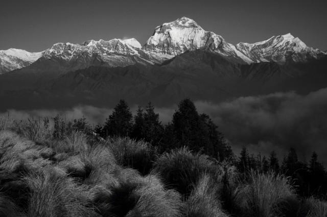 Непал №49