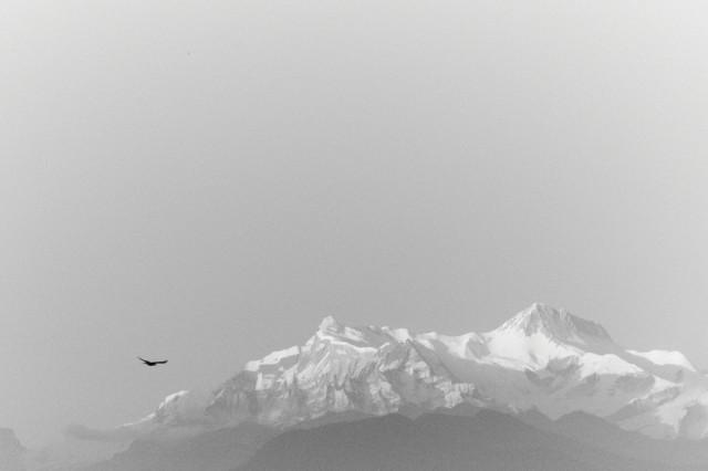 Непал №156
