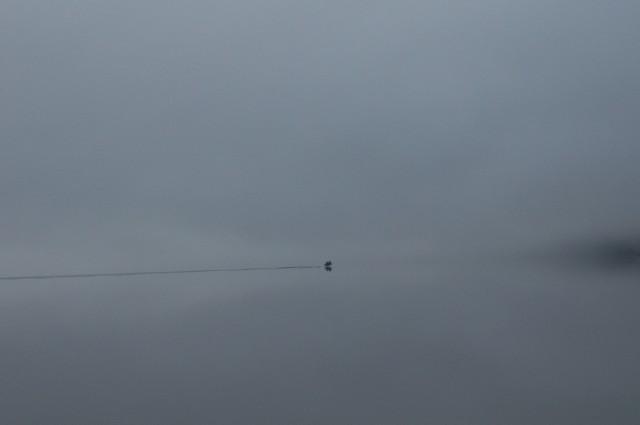 Телецкое озеро: Настроение №18