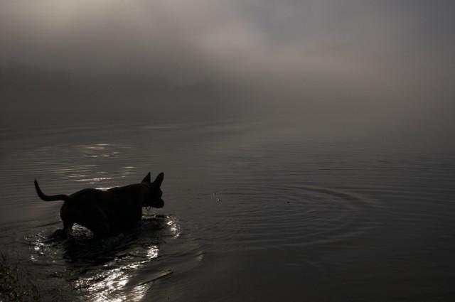 Телецкое озеро: Настроение №30