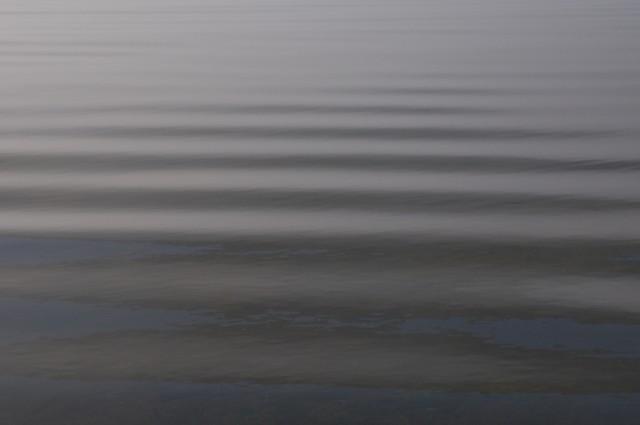 Телецкое озеро: Настроение №36