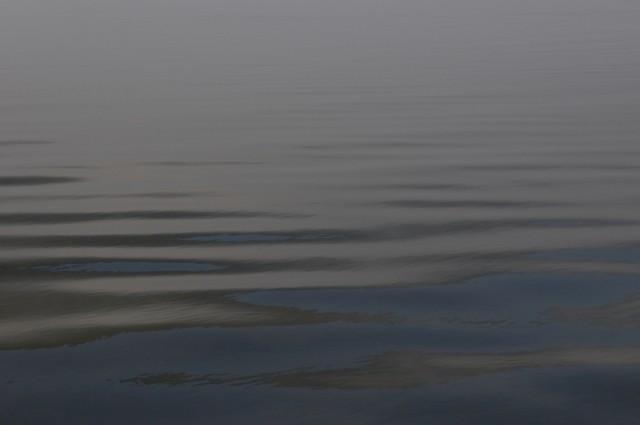 Телецкое озеро: Настроение №37