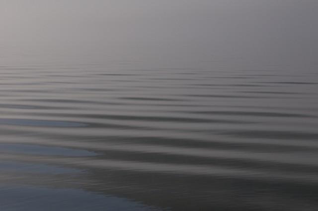 Телецкое озеро: Настроение №39