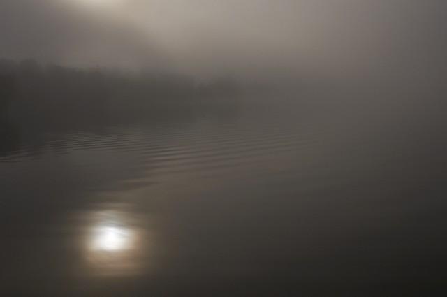 Телецкое озеро: Настроение №25