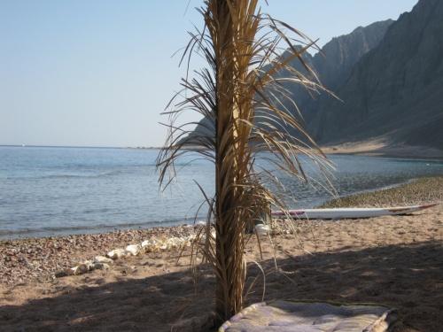 пустынный берег Красного Моря