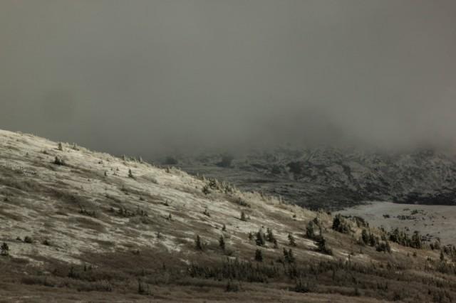 В снежных отсветах