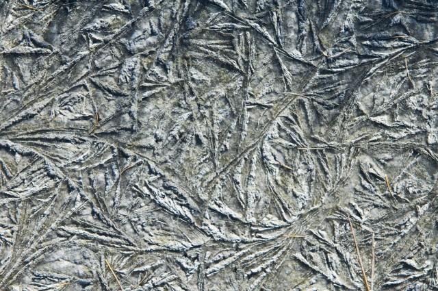 Ледяные узоры 11