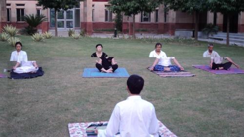 группа любителей йоги