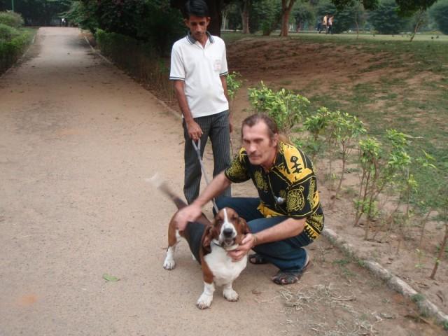 индийская собака