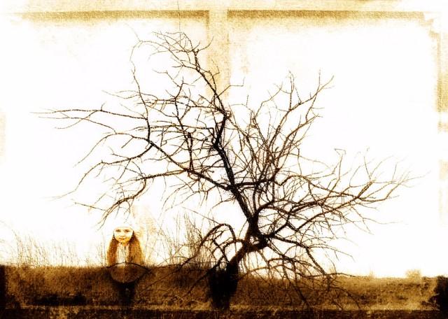 девочка и дерево