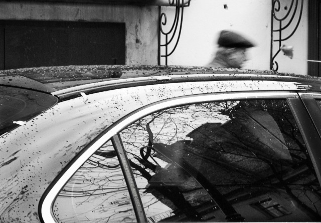 после дождя, Гороховая