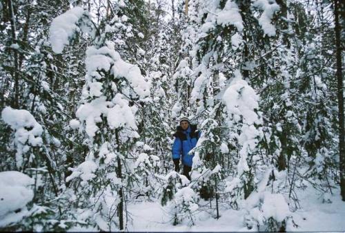 я из лесу вышел...и снова зашел