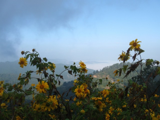 Горы рано утром.
