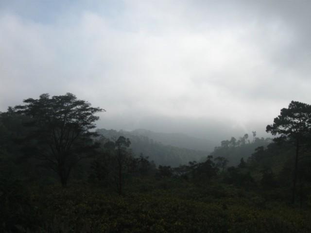 Туманится...