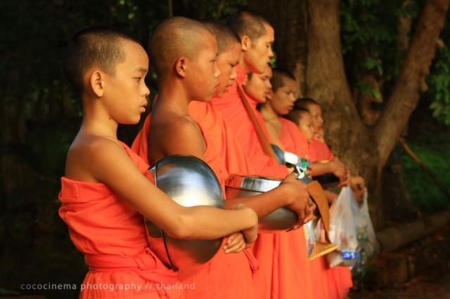 Будды 4