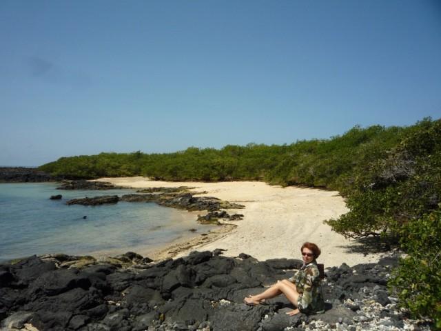 это приватный пляж морских львов