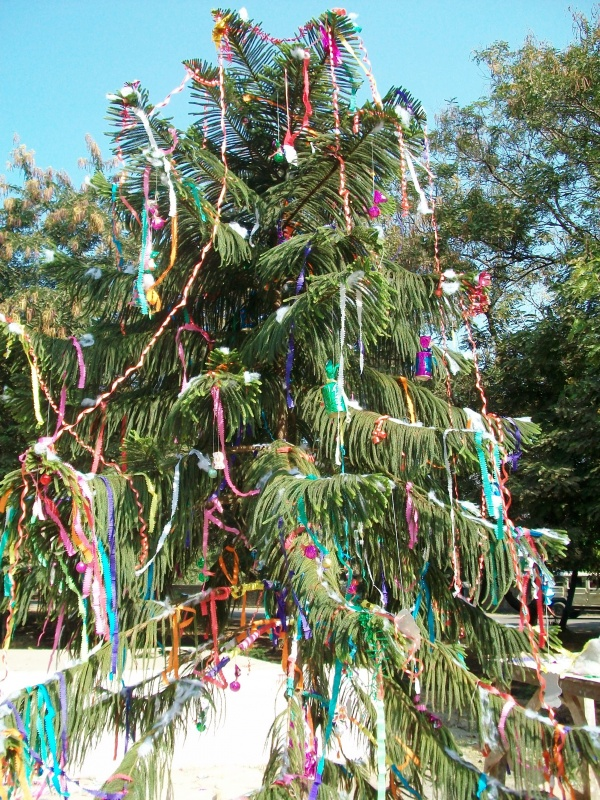 Der Weihnachtenbaum по-биласпурски
