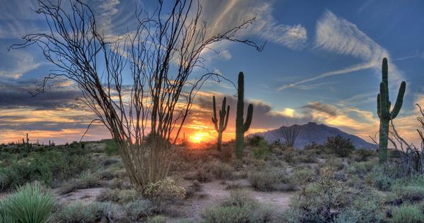 восход солнца в Аризоне