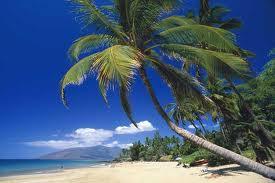 Мауи,не хуже Индии..
