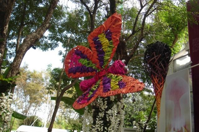 И еще один вид бабочек:)
