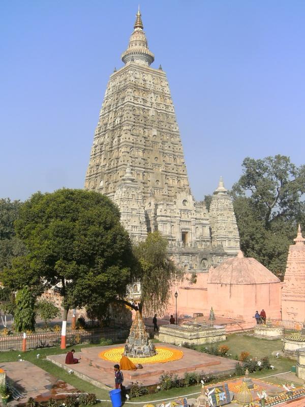 оранжевые чорнобривцы у храма