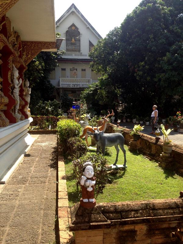 Chiang Mai_Feb 7_10